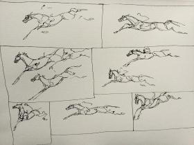 Leap in the Dark (study)