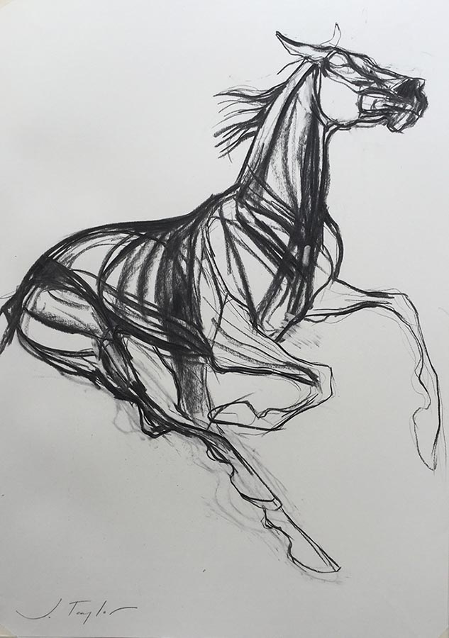 Fearless Horse Charcoal